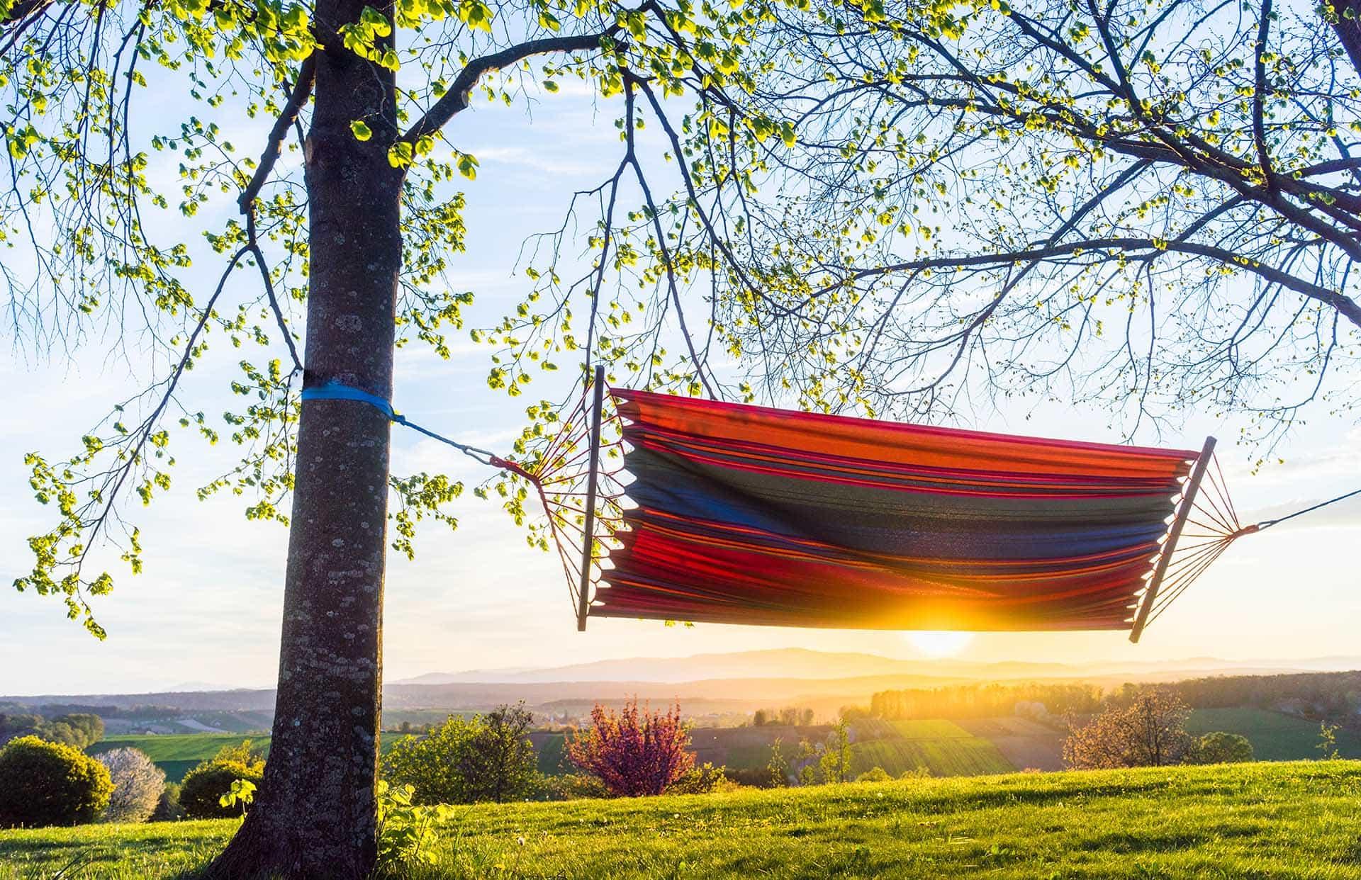 Hängematte bei Sonnenuntergang im Reiters Reserve