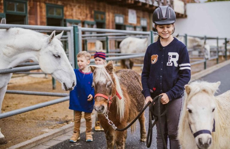 Kinder beim Ausführen der Miniaturhorses im Reitstall