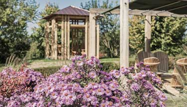 Blumenpracht im Reiters Reserve
