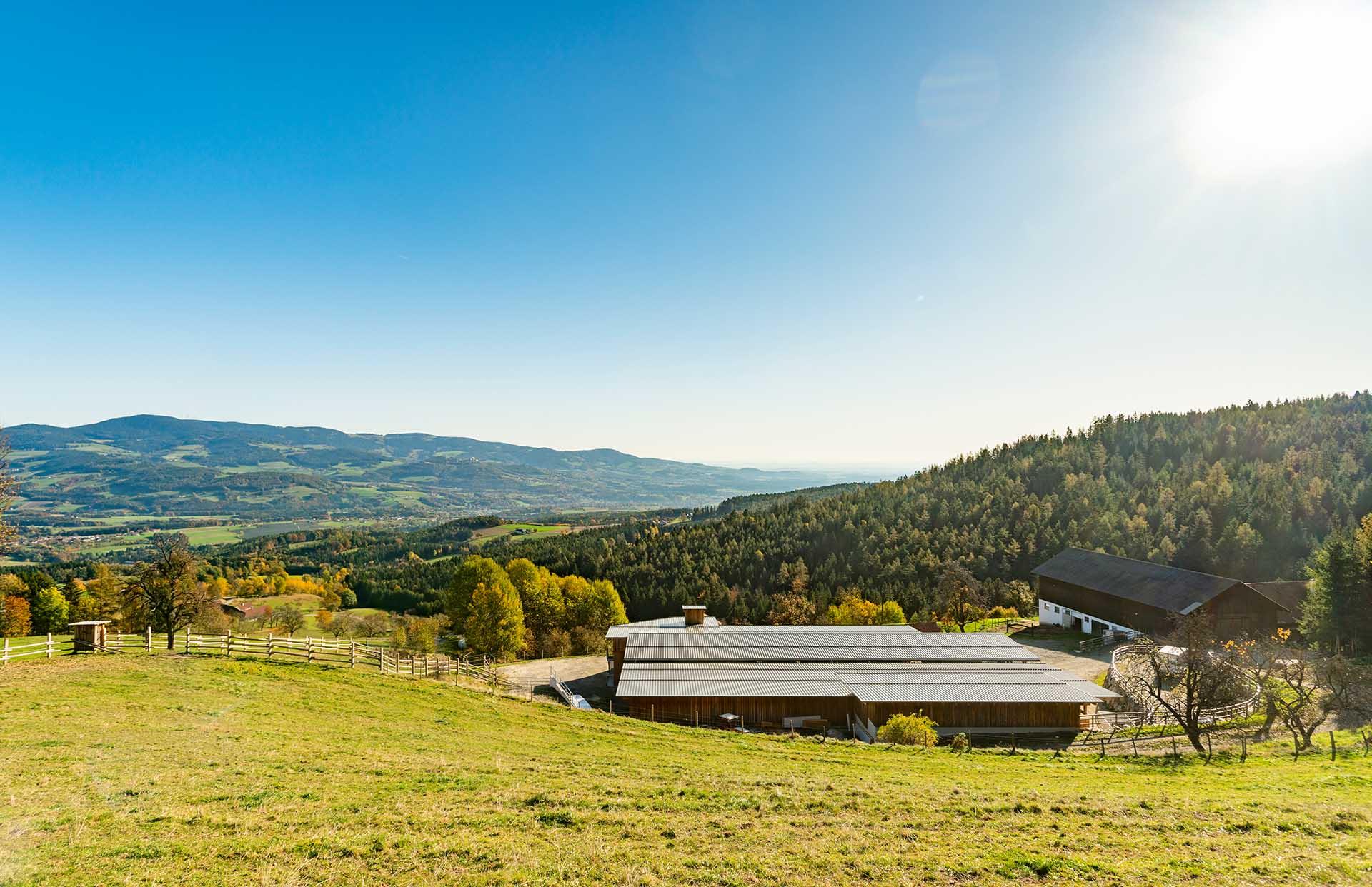 Reiters Landwirtschaft am Rabenwald