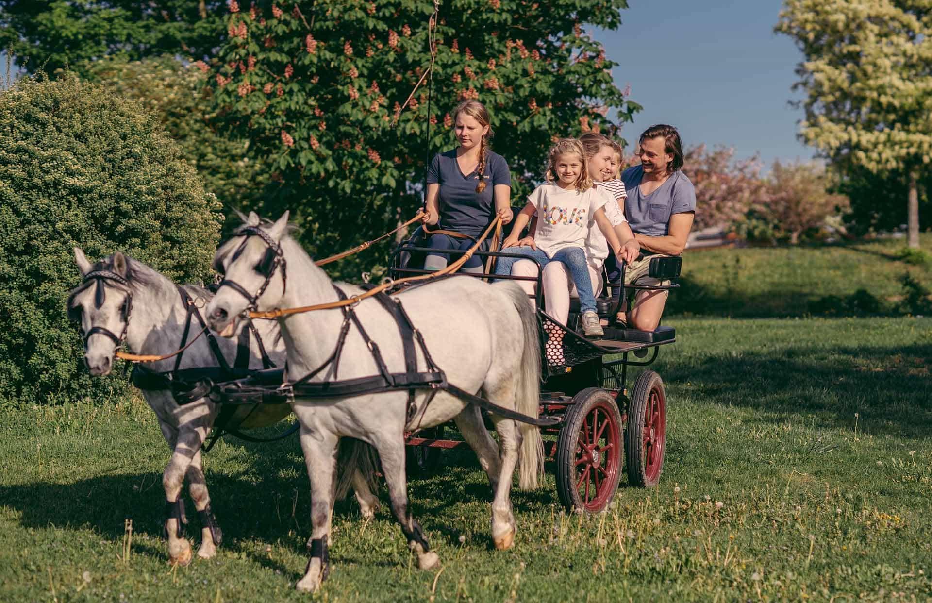 Familie mit Kindern bei Kutschenfahrt