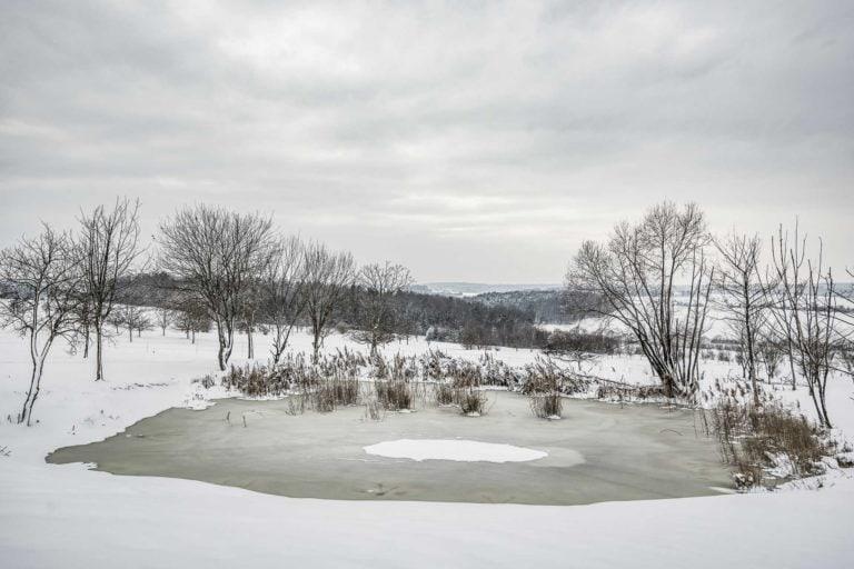 zugefrorener Teich im Reiters Reserve