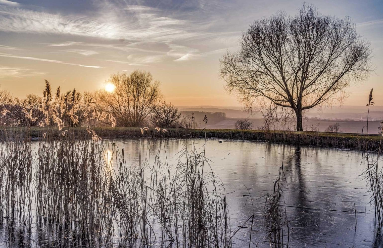 zugefrorener Teich im Reserve bei Sonnenuntergang