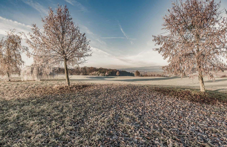 Herbst- Winterlandschaft im Reiters Reserve