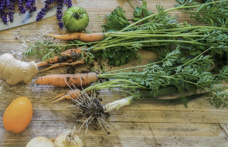frischgepflücktes Gemüse aus dem Reserve