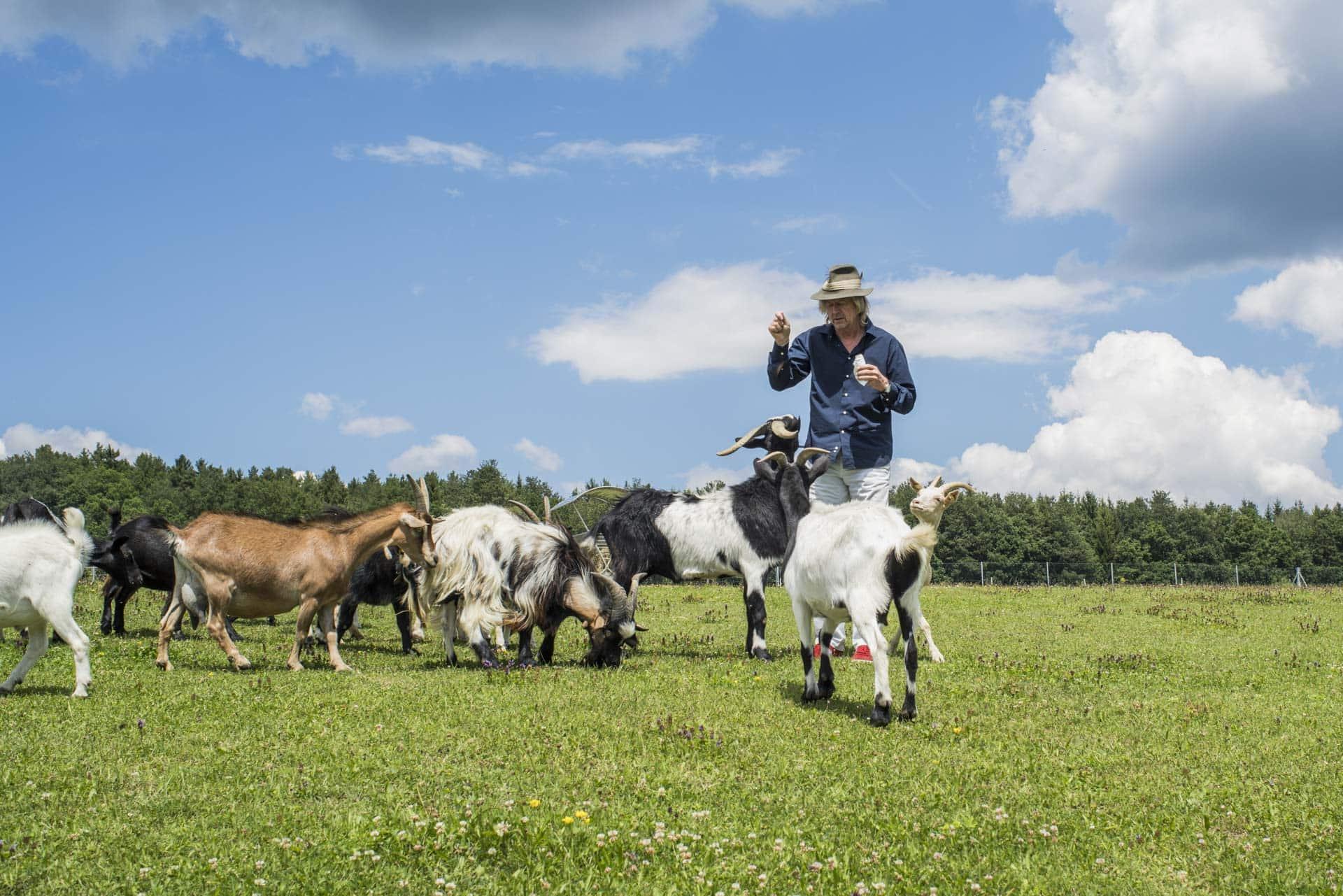 Karl J. Reiter beim Füttern der Ziegen
