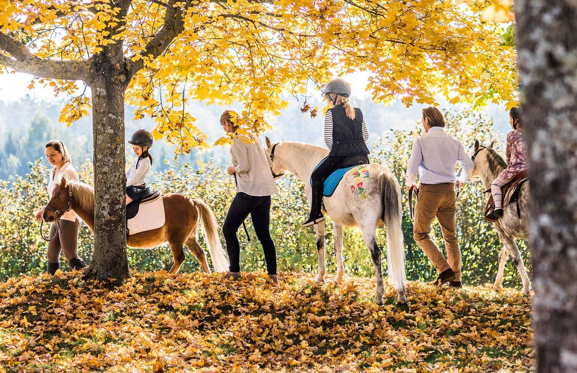 Pony reiten im Herbst im Reiters Reserve