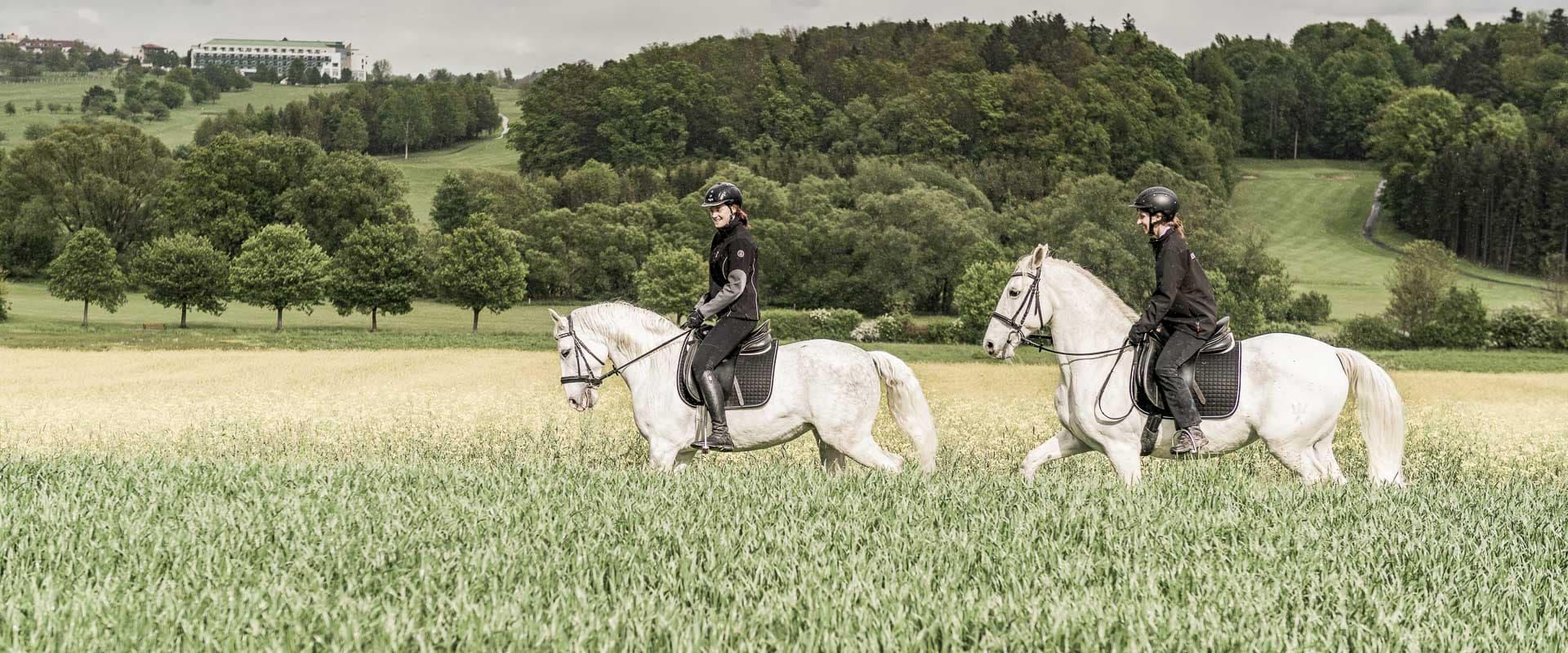 zwei Frauen reiten auf Lipizzanern durchs Feld