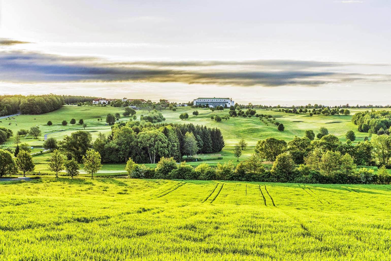 Landschaft Reiters Reserve
