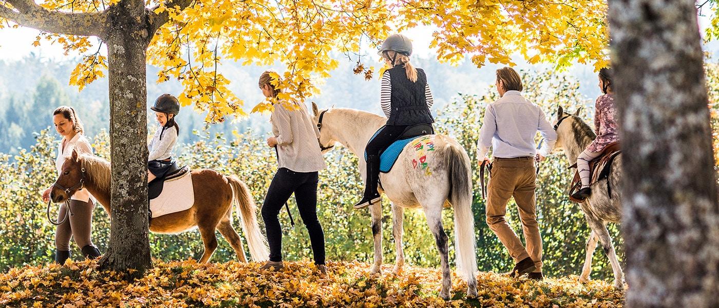 Ponyreiten Herbst im Reserve