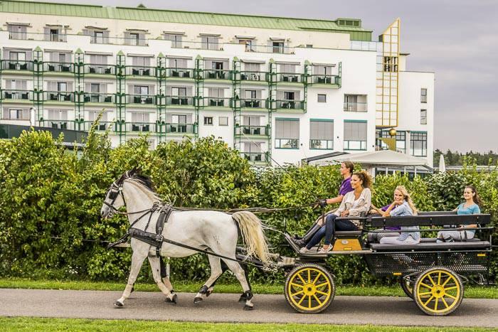 Kutschenfahrt und Hotel Supreme im Hintergrund