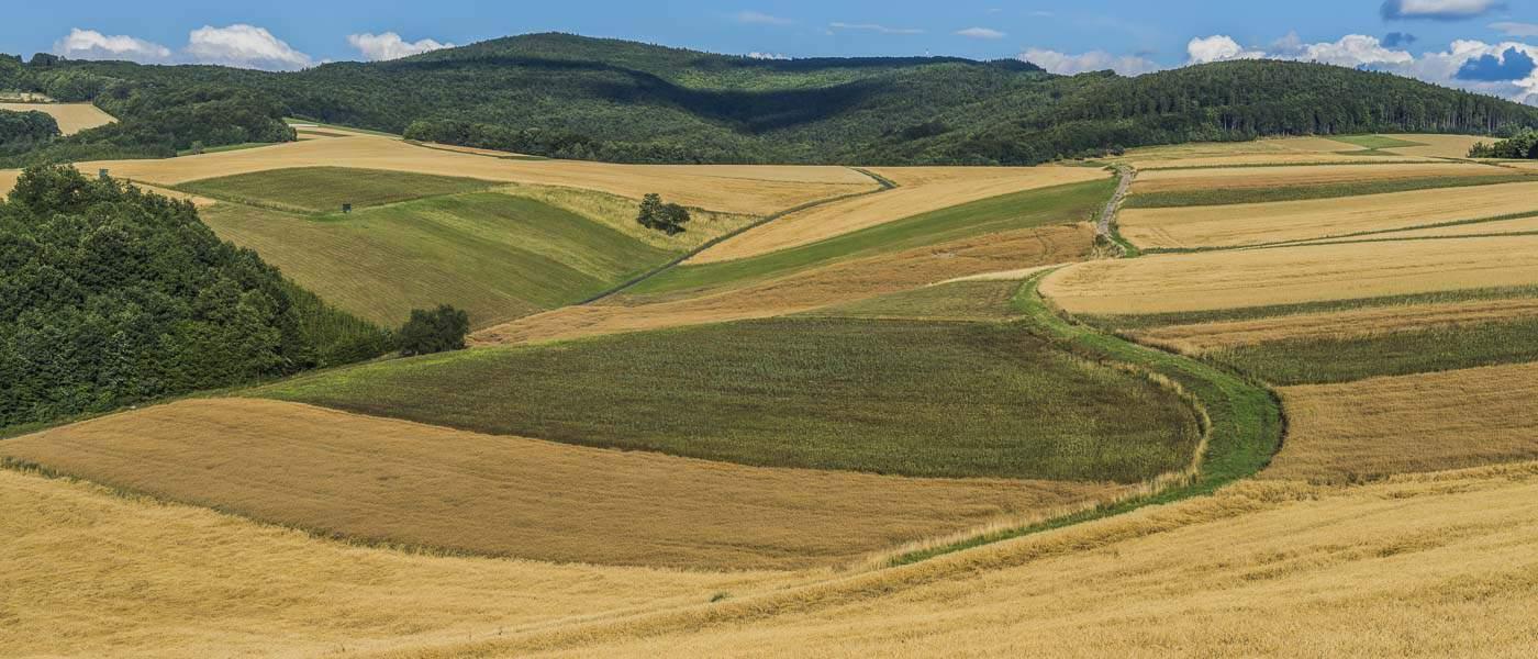 Südburgenländische Landschaft