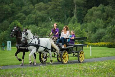 Kutschenfahrt im Reiters Reserve