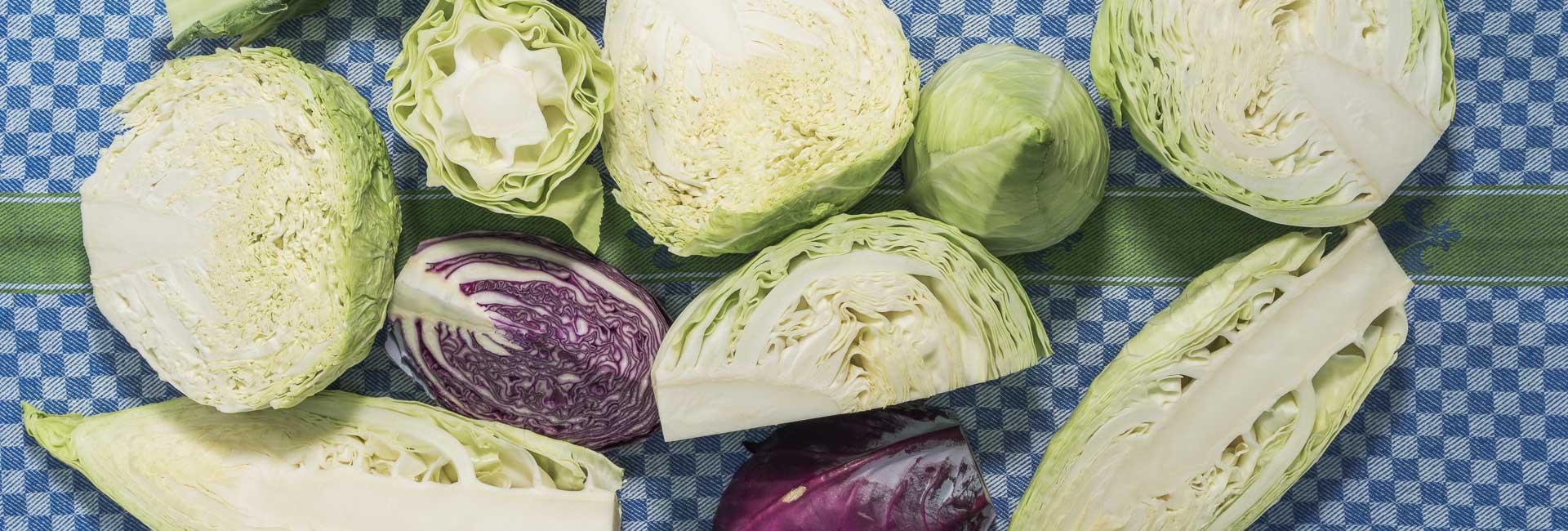 frisches Gemüse aus dem Reserve
